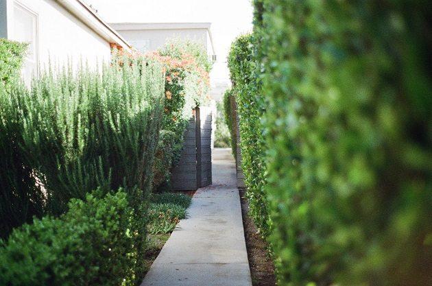 5 Simple Ways To Improve Your Garden And Increase Your Property S Value Property Price Advice
